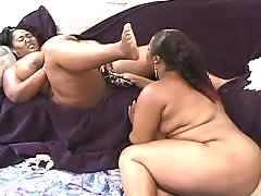 Porn adventure with busty fat chick black fat xxx